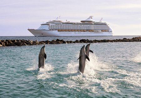 RCI_Adventure_CuracaoDolphins_rdax_574x400